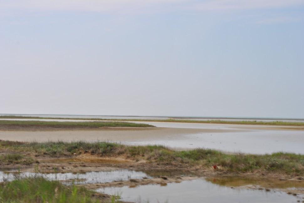 Лечебные грязи Арабатской стрелки, озеро Сиваш в Крыму